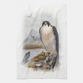 Vögel Wanderfalke-Johns Gould von Großbritannien Geschirrtuch