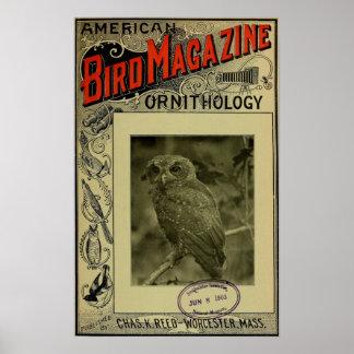 Vogel-Zeitschrift am 8. Juni 1903 Posterdruck