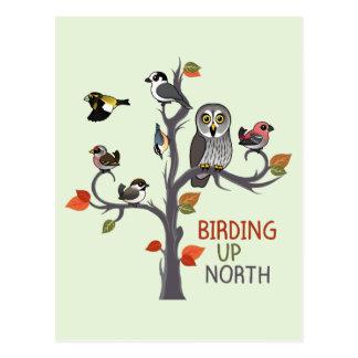 Vogelbeobachtung herauf Norden Postkarte