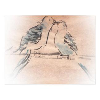 Vogelliebhaber im Babyblau und -WEISS Postkarten