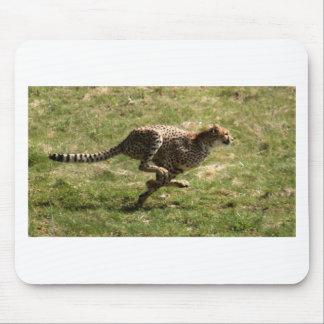Voller Galopp des Gepards (Acinonyx_jubatus) Mousepad