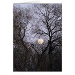 Vollmond im bloßen Baum-Foto Grußkarte