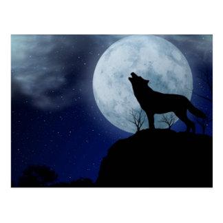 Vollmond-Wolf Postkarte