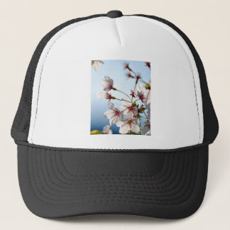 Von hinten beleuchtete Kirschblüten Truckerkappe