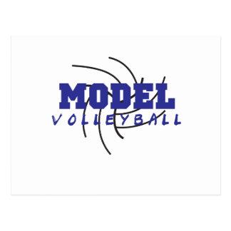 Vorbildlicher Volleyball 1 Postkarte