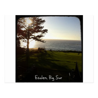 Vorderer Rasen bei Esalen, großes Sur Postkarte