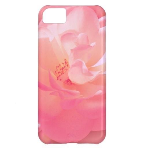 Vorzügliche rosa Rose iPhone 5C Schale