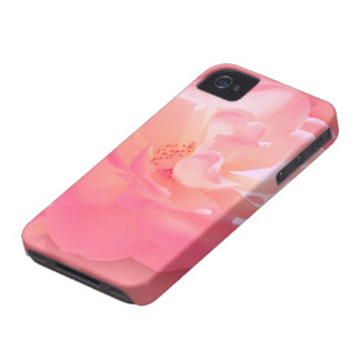 Vorzügliche rosa Rose iPhone 4 Case-Mate Hüllen