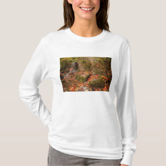WA, Park-Arboretum Seattles, Washington, japanisch T-Shirt