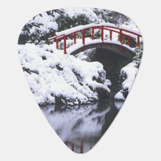 WA, Seattle-, Mondbrücke und Teich nach Winter 2 Plektron