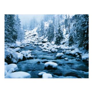 WA, Wenatchee staatlicher Wald, Kaskade Postkarte