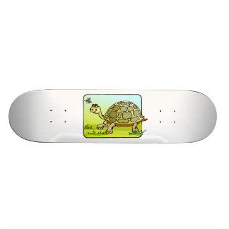 Wachsame Schildkröte 19,7 Cm Skateboard Deck