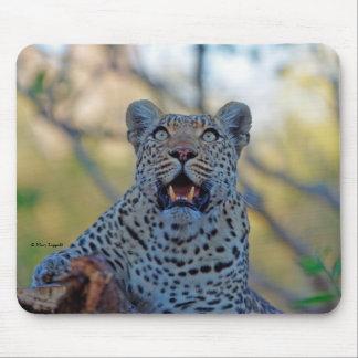 Wachsamer Leopard Mousepad