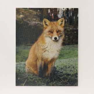 Wachsames Fox-Puzzlespiel Puzzle