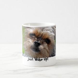 Wachte gerade hässlichen Hund auf Kaffeetasse