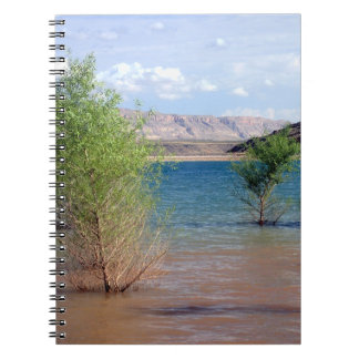 Wachtel-Nebenfluss-Notizbuch Notizblock