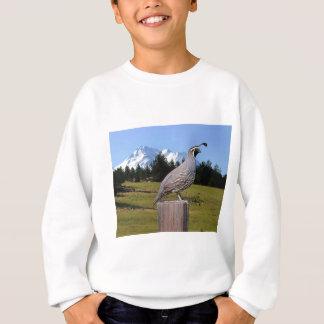 WACHTELN IM TRAUMpunkt Sweatshirt
