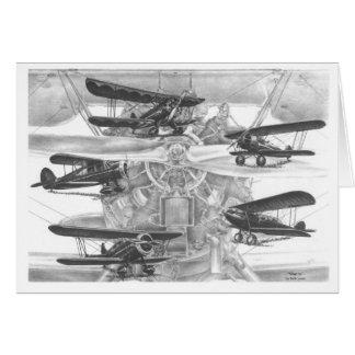 Waco-Doppeldecker-Luftfahrt, die durch Kelli Schwa Karten
