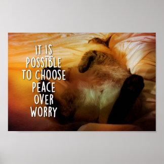 Wählen Sie Frieden über Sorge-voll frontaler Poster
