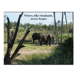 Wähler, wie Elefanten, vergessen nie Postkarte