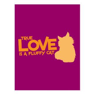 WAHRE LIEBE ist eine flaumige Katze Postkarte