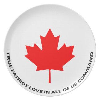 Wahre Patriot-Liebe in allen uns Befehl Melaminteller