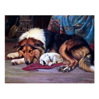 Waisenhund mit Collie-Vintager Kunst Postkarte