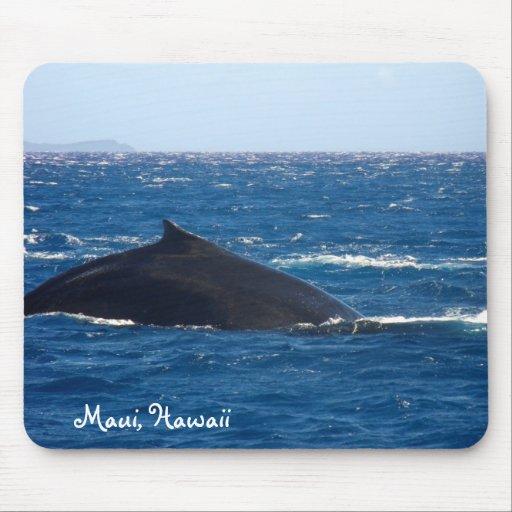 Wal-Aufpassen Mauis Hawaii Mauspads