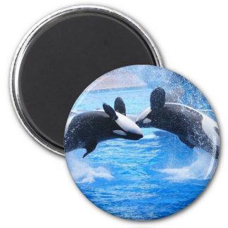 Wal-Foto-Magnet Runder Magnet 5,7 Cm