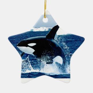 Wal-Spritzen Keramik Stern-Ornament