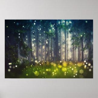 Wald, Bäume auf Waldlichtung, Dämmerung Poster