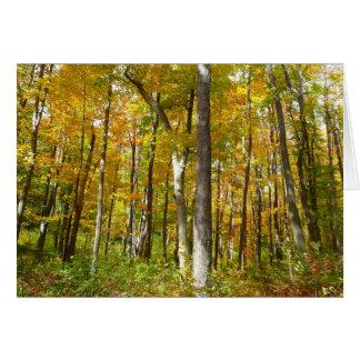 Wald des Gelbs verlässt Herbst-Natur-Fotografie Karte