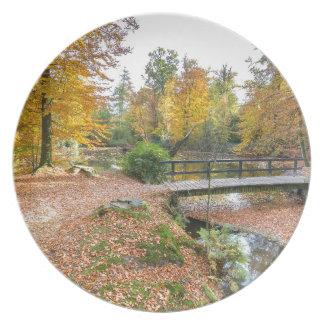 Wald mit Teich und Brücke in den Fallfarben Melaminteller
