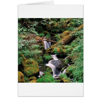 Wald Oregon Fluss-Watsons Umpqua Karte