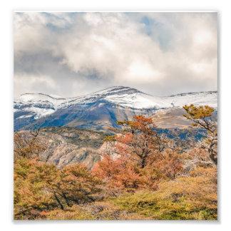 Wald und Snowy-Berge, Patagonia, Argentinien Fotodruck