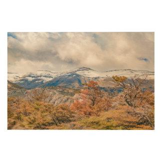 Wald und Snowy-Berge, Patagonia, Argentinien Holzleinwand