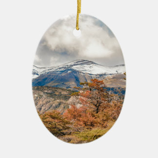 Wald und Snowy-Berge, Patagonia, Argentinien Keramik Ornament