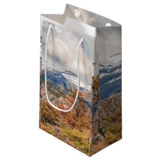 Wald und Snowy-Berge, Patagonia, Argentinien Kleine Geschenktüte