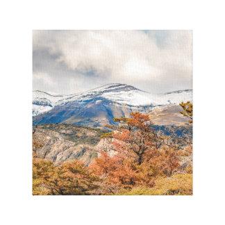 Wald und Snowy-Berge, Patagonia, Argentinien Leinwanddruck