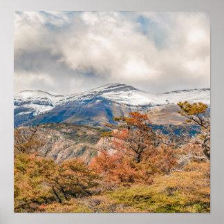 Wald und Snowy-Berge, Patagonia, Argentinien Poster