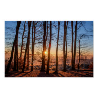 Wald - Winter Poster