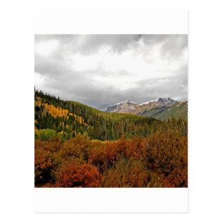 WaldBush-Berge Schottland Postkarte