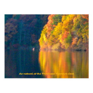 Walden Teichherbst-Laubpostkarte Postkarte