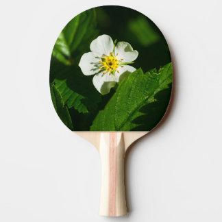 Walderdbeere-Blume Tischtennis Schläger