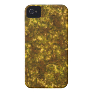 Waldhimmel Saturn iPhone 4 Cover