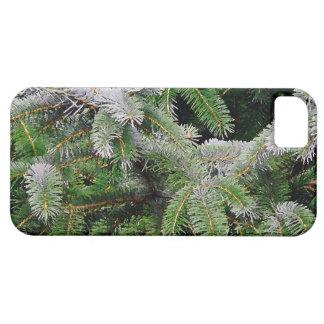 Waldholz-Blätter-Bäume, die landschaftliches iPhone 5 Hülle