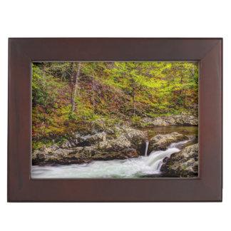Waldstrom in Great Smoky Mountains Erinnerungsschachteln