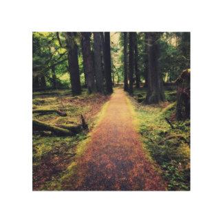 Waldweg Holzleinwand