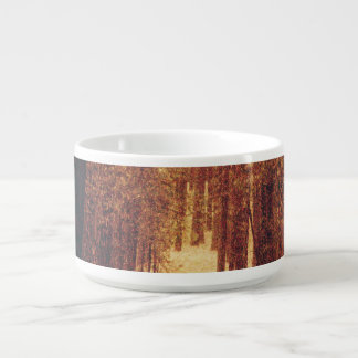 Waldweg… Schüssel