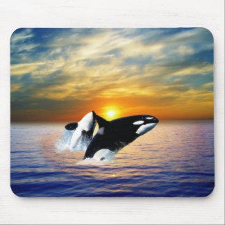 Wale am Sonnenuntergang Mauspads